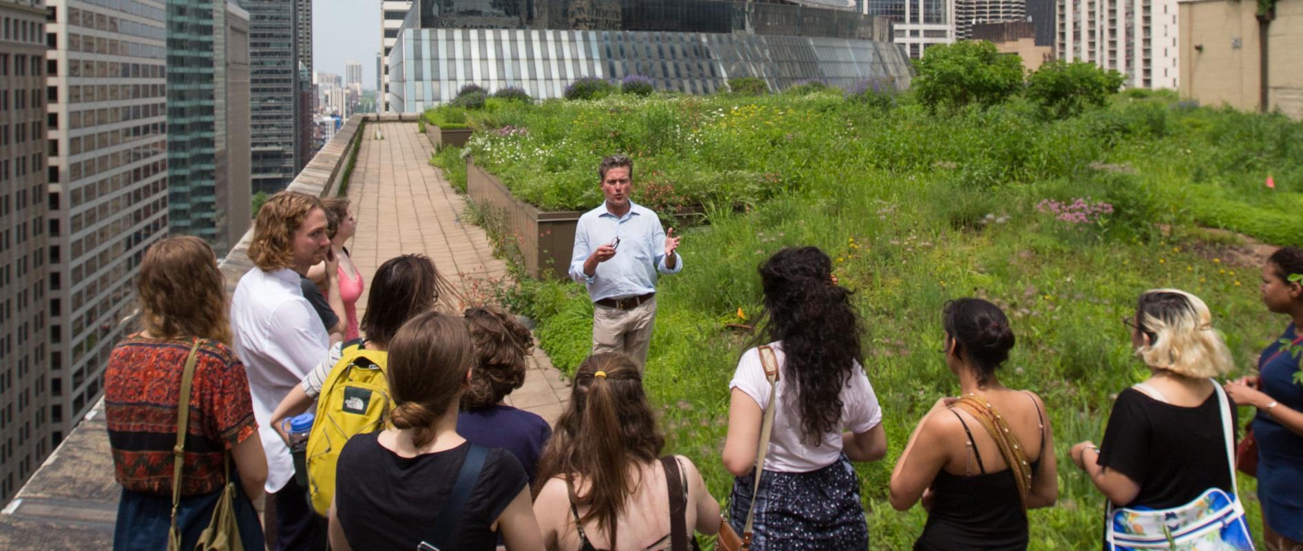 Students on a field trip to Chicago's City Hall Rooftop Garden